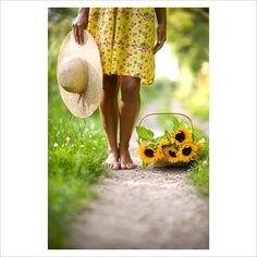 Barefoot woman wearing a flowery yellow dress holding a straw sunhat with a trug of Sunflowers on a rural path