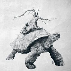Tortoise Tree - Growth Art Print by Adam Dunt Tortoise Drawing, Tortoise Tattoo, Inspiration Tattoos, Pencil Drawings, Art Drawings, Ohh Deer, The Neverending Story, Graphisches Design, Black Tree