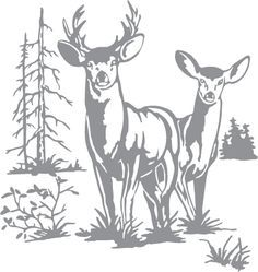 rx online Glass etching stencil of Doe and Buck Deer with Trees. In category: North Americ… Glass etching stencil of Doe and Buck Deer with Trees. In category: North American Mammals, North Woods, Trees Wood Burning Stencils, Wood Burning Patterns, Wood Burning Art, Deer Stencil, Stencil Art, Stencil Wood, Glass Engraving, Wood Engraving, Glass Etching Stencils