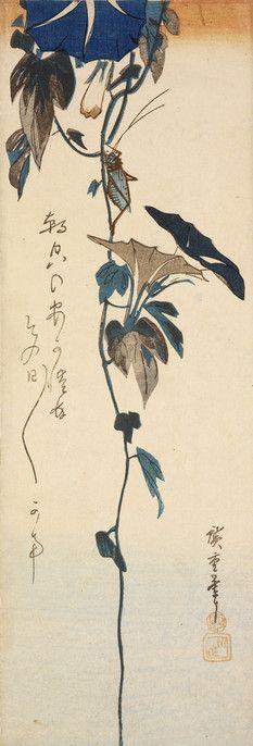 Cricket and Morning Glories (Asagao ni kôrogi) – Objects - RISD MUSEUM