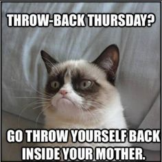 I want my own grumpy cat lol love that kitty  #ThrowbackThursday