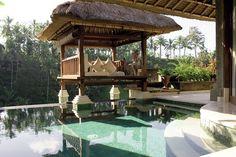Viceroy (Bali)