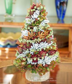This succulent topiary tree holiday centerpiece needs less care than a floral arrangement and lasts much longer---several months or more. Its requirements Succulent Arrangements, Cacti And Succulents, Planting Succulents, Planting Flowers, Floral Arrangements, Succulent Tree, Succulent Gardening, Gold Christmas Decorations, Holiday Centerpieces