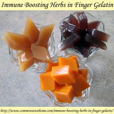 Jello flu shots - Immune Boosting Herbs in Finger Gelatin - combine anti-viral and antibacterial herbs with fruit juice and honey for a healthier sweet treat.