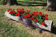 Öltöztesd virágba a farönköt, a kert ékessége lehet Log Planter, Little Gardens, Container Flowers, Garden Inspiration, Garden Ideas, Terrazzo, Stepping Stones, Backyard, Landscape
