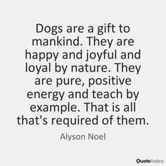 Dogs are a gift to mankind. They are happy and joyful and loyal by nature. They are pure, positive energy and teach by example. That is all that's required of them. - Alyson Noel #2