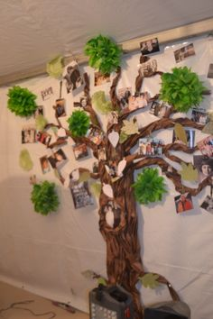 Family Tree butcher paper twisted trunk, tissue paper leaves, green doilies, and hand-cut leaves. Family Tree themed, green and brown with a pop of pink.