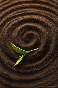 Tea by Adarsha Raju - http://ift.tt/1ubNRaf