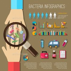 Bacteria Infographics Set