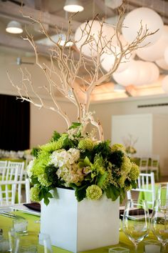 5. Diseño verde con ramas secas y flores