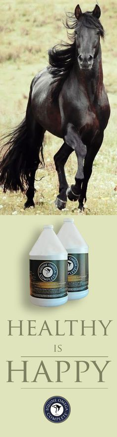 Healthy horses are happier. If cells are provided a properly balanced omega 3 rich polyunsaturated fat that contains the proper antioxidants that cleanses the cell walls of bad fat, the horse own anti inflammatory system is stimulated, the immune system strong, hoof quality is dramatically increased, hair coat is improved and anxiety is relieved. $59.95. Learn more. www.o3animalhealth.com