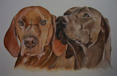 painted in watercolour for a customers Christmas present
