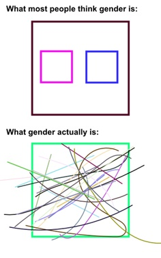 """What most people think gender is Vs. What gender actually is"" #feminism"