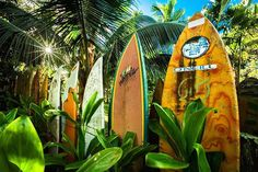 Hawaiian Picket Fence