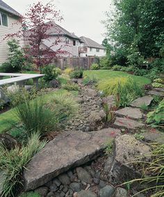 A dry streambed and