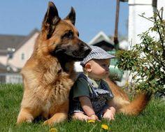 20 fotos que mostram como é bom para as crianças crescerem com animais de estimação