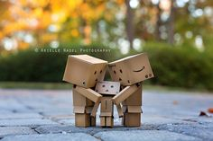 cardboard | Tumblr