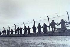 ring16 - Greenham Commom Peace Camp