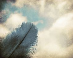 Feather Photography Home Decor Blue Sky 10x8 Print Dreams Of Flight... by VictoriaEnglishCharm on Etsy