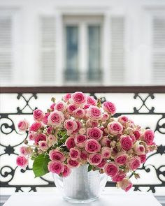 Pink roses at Parisian balcony.