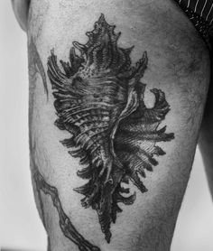 """"""". Done some months ago at Covil Tattoo."""""""