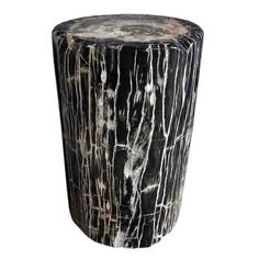Hudson Petrified Wood 10-15-56