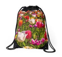 Colourful Tulips at the Conservatory Gardens Drawstring Bag