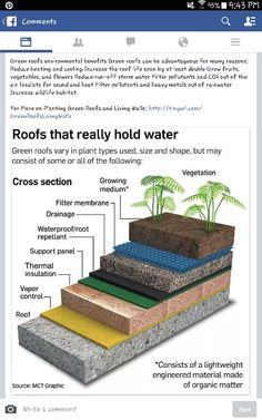 Roofs that hold water: reduce heating and cooling costs, increase life of roof, and create a rooftop garden! Would be great on a shipping container home, as there might be a risk of collapsed roof otherwise if drainage isn't sufficient.
