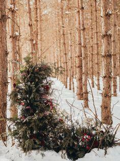 Snowy, winter inspiration.  Photo: @snowyriverimages