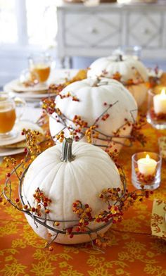 Bittersweet Wrapped Pumpkins