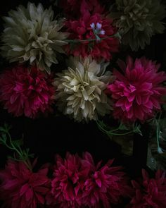 Cemetary bins - Al Brydon Still Life Photography, Fine Art Photography, Contemporary, Plants, Photos, Pictures, Plant, Artistic Photography, Planets