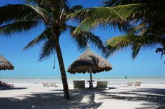 isla holbox for backpackers