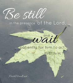 WORD17, Week 22 #bestill #psalms #bibleverse