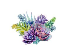 Succulent stickers // cactus stickers // green // watercolor art // planner stickers // g . Succulents Drawing, Watercolor Succulents, Green Watercolor, Watercolor Art, Succulents Painting, Succulents Art, Succulent Tattoo, Succulent Bouquet, Tattoo Drawings