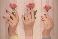 rose, flowers, and vintage image Kitsch, The Wombats, Good Vibe, Hand Reference, Pink Aesthetic, Girl Gang Aesthetic, Art Inspo, Pretty In Pink, Artsy