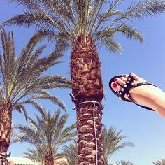 Happy feet and palms in Palm Springs! }'#theblondesalad #chiaraferragni #coachella - @chiaraferragni- #webstagram