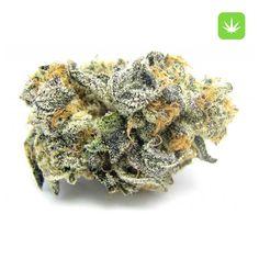 Marijuana Strains Archives - Ryan Marijuana Shop (buy and smoke weed freely ) Cannabis Seeds Online, Cannabis Seeds For Sale, Cannabis Growing, Cannabis Oil, Marijuana Butter, Marijuana Plants, Blue Cookies, Buy Weed, Medical Marijuana