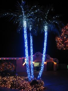 decorating extraordinary exterior christmas decoration feats palm tree with lighting on the rod endearing christmas lights house ideas for special moment