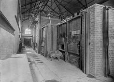 PH Interior of the Prahran Council's municipal destructor at the Surrey Road depot. Domestic waste was burnt to produce electricity; Garbage Collection, Melbourne Suburbs, The 'burbs, Broken Promises, Surrey, Old Photos, Australia, History, Interior