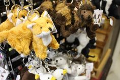 The Prairie Treasures Gift Shop has put out a lot of new items, including some special items for back to school, like these little guys which are great for backpacks. You never have to pay admission to shop.