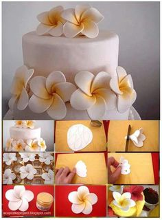 Great illustrated directions for this one. More (cake decorating frosting gum paste) How to plumeria gum paste Fondant flowers picture only Cake tutorial, yes, but i say inspiration for polymer clay as well try with 24 lb paper Icing Flowers, Gum Paste Flowers, Fondant Flowers, Sugar Flowers, Fondant Rose, Fondant Baby, Cake Flowers, Buttercream Flowers, Yellow Flowers