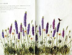 Aoki Kazuko. (青木 和子, Japanese)