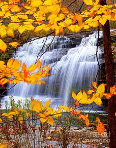 Autumn at Pixley Falls