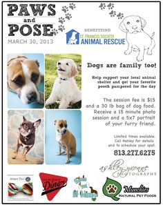 Paws and Pose // March 30th // Tampa Bay Dog Event