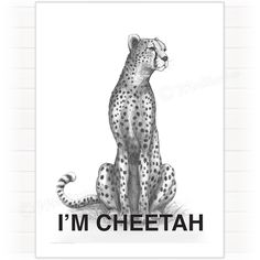 Poster, Cheetah Gepard