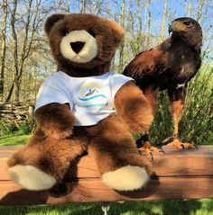 Der Urlaubär von ferienwohnungen.de hat keine Angst vor wilden Tieren ... #urlaubär