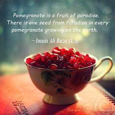 """✿⊰ℳy ℱąitℋ-IsLaM⊱✿   """"Ahl-e-Bait"""" ~ Imam Ali Raza (A.S)"""