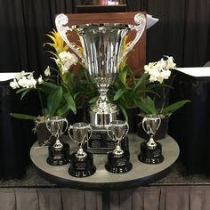 The Final Four of the Residents Bowl is set! Mayo Arizona vs Southern Illinois and Northwestern vs Manitoba. Who will win it all? #PSTM16