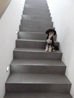 Betontreppe gespachtelt, Treppenbeschichtung Betonoptik, Treppe wie Sichtbeton, fugenlose Treppenspachtelung: Zementär Oberflächen GmbH