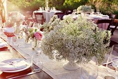 Image result for compote babys breath